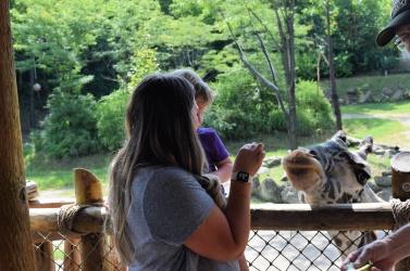 zoo29